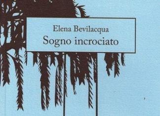 Sogno incrociato di Elena Bevilacqua