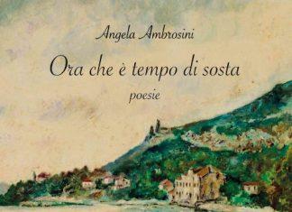 Ora che è tempo di sosta di Angela Ambrosini